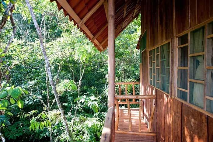casas-na-arvore-airbnb_5c