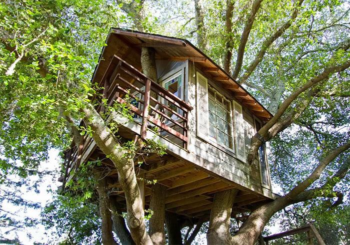 casas-na-arvore-airbnb_7a