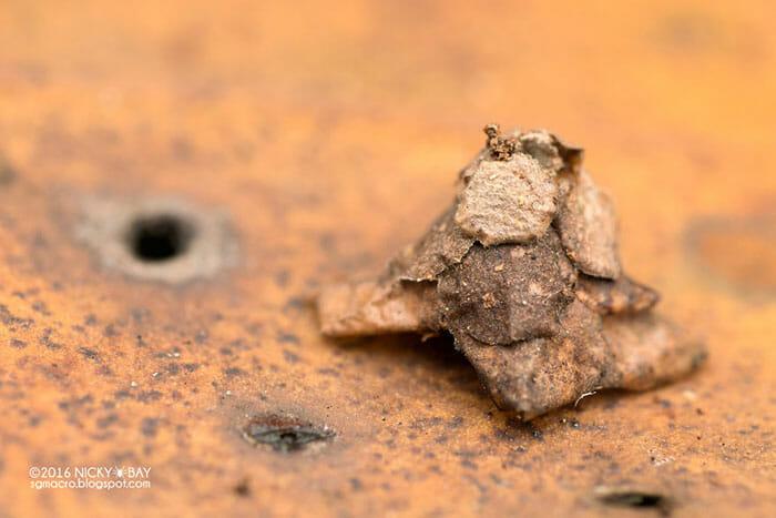 estruturas-minusculas-fascinantes_5