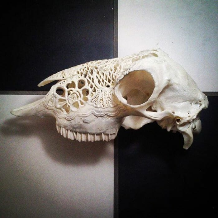arte-em-cranios_12
