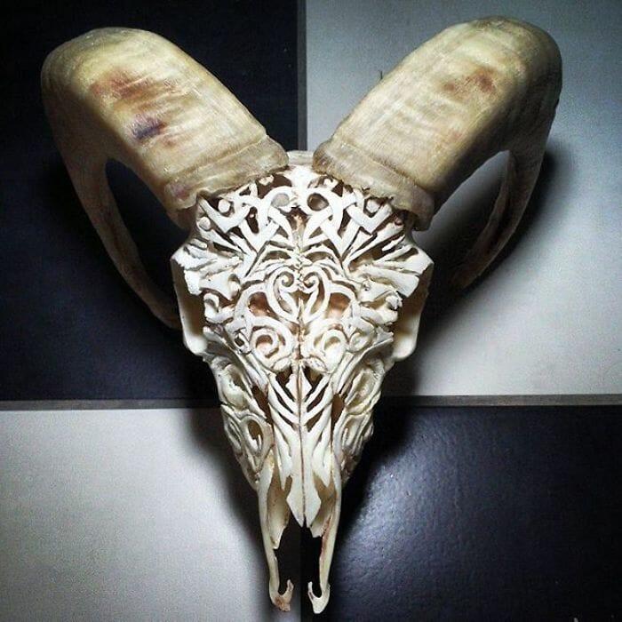 arte-em-cranios_9