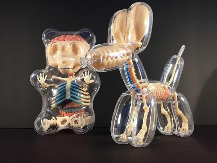baloes-anatomicos