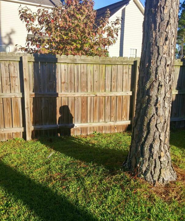 criancas-mestres-esconde-esconde_62