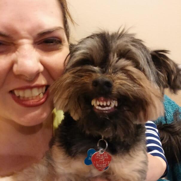 animais-sorridentes_2
