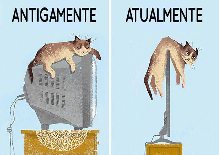 antigamente-vs-atualmente-gatos