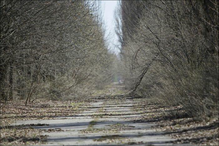 chernobyl-atualmente_3