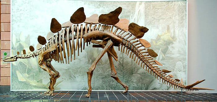 mitos-sobre-dinossauros_11