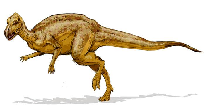 mitos-sobre-dinossauros_17