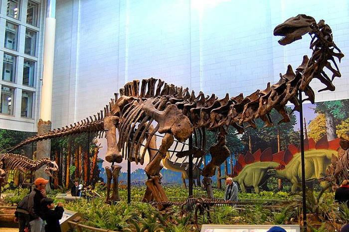 mitos-sobre-dinossauros_5