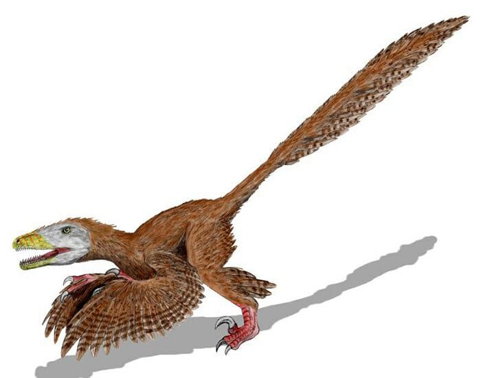 mitos-sobre-dinossauros_6