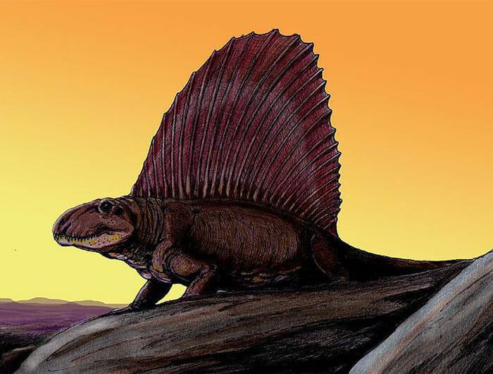 mitos-sobre-dinossauros_9