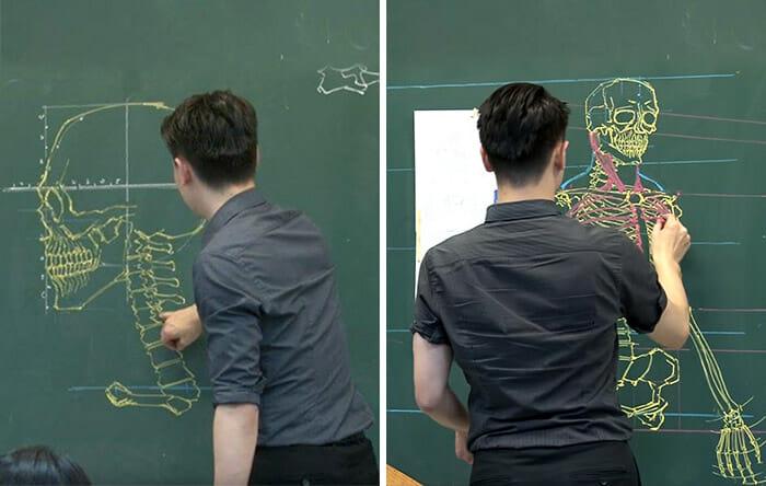 anatomia-quadro-negro