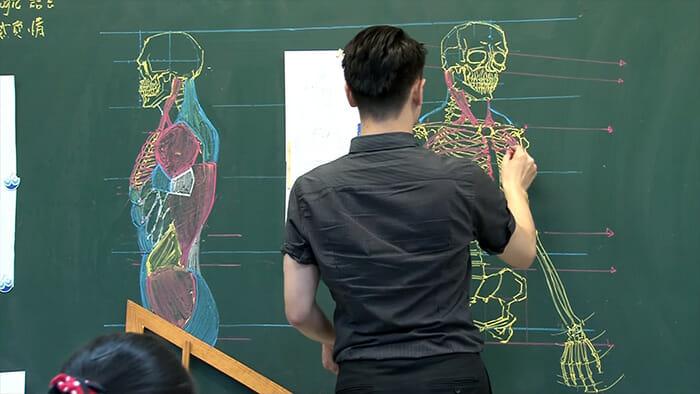 anatomia-quadro-negro_1