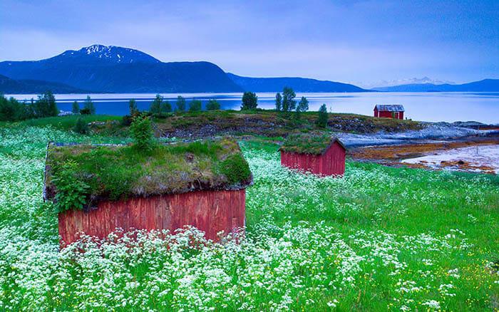 casas-escandinavia_18