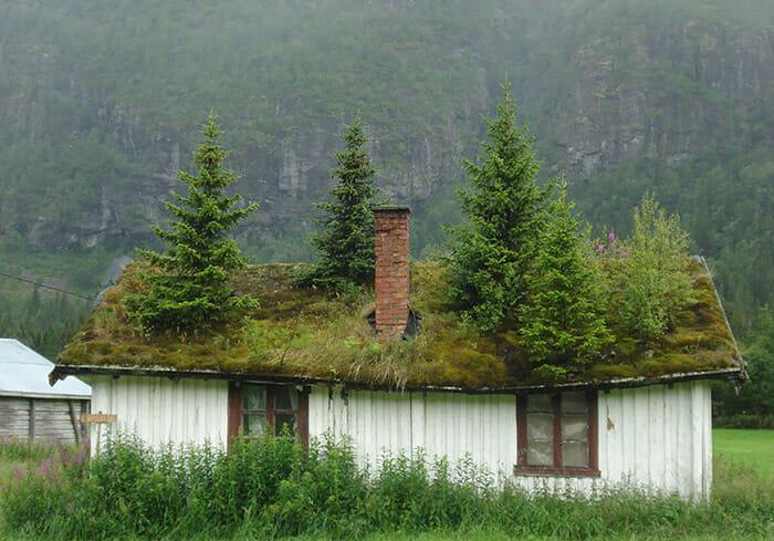 casas-escandinavia_6
