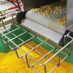 Uma Visita à Fábrica da LEGO: Descubra Como as Peças são Fabricadas!