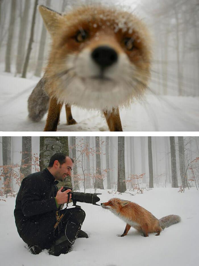 segredo-fotografias_5