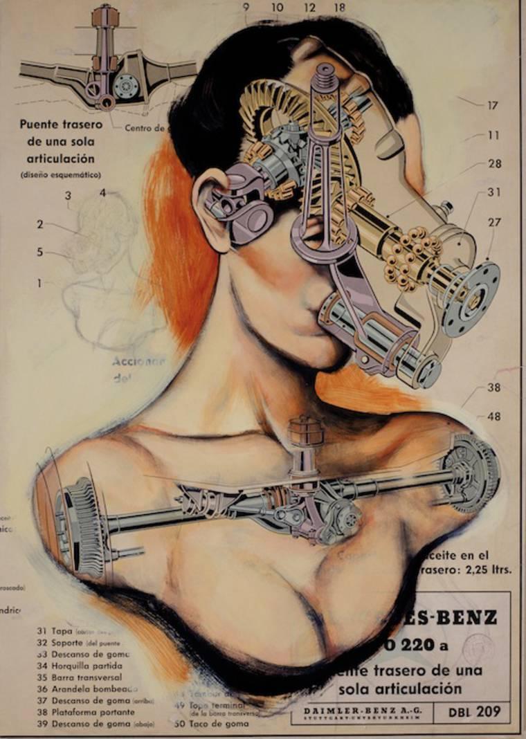 anatomias_3