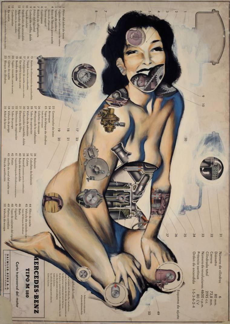 anatomias_6