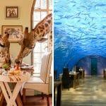 25 Restaurantes e Cafés Espetaculares Que Você Vai Querer Conhecer Antes de Morrer