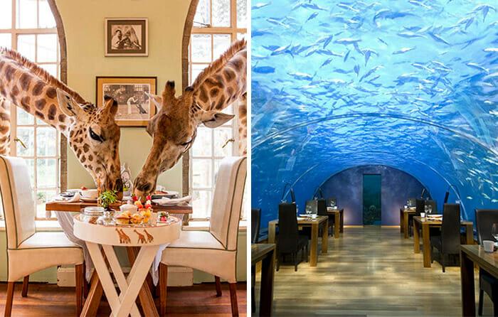 restaurantes-cafes-espetaculares