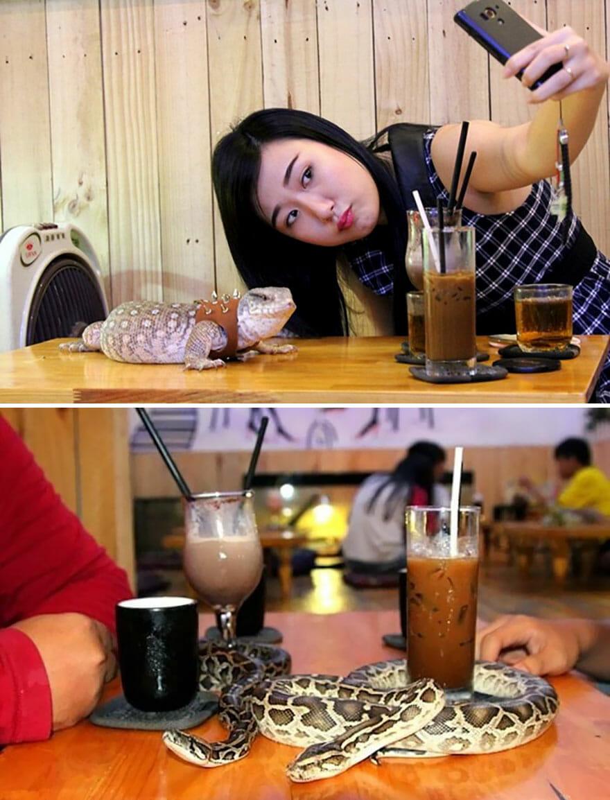 restaurantes-cafes-espetaculares_2