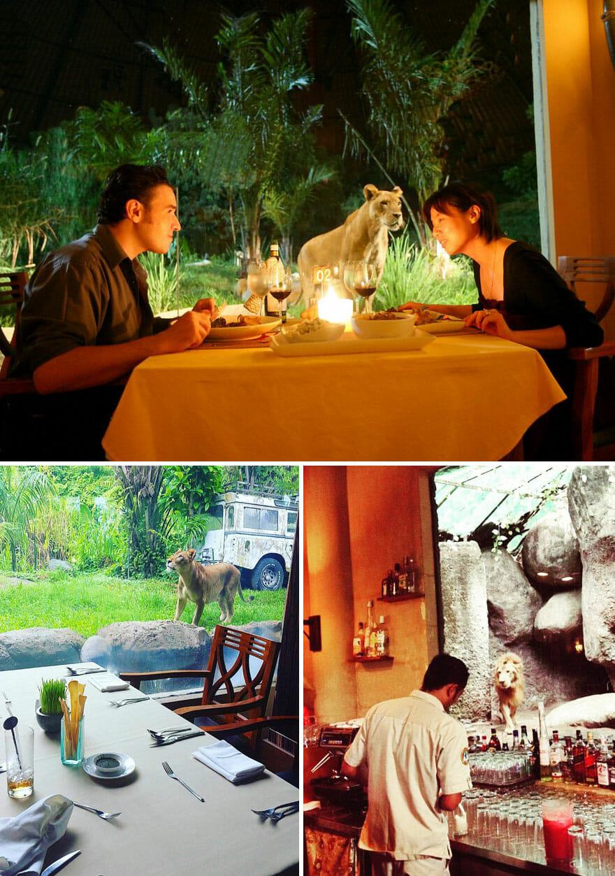 restaurantes-cafes-espetaculares_8
