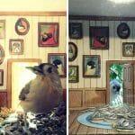 Ele Encontrou Uma Forma Genial de Fotografar Pássaros... Descubra