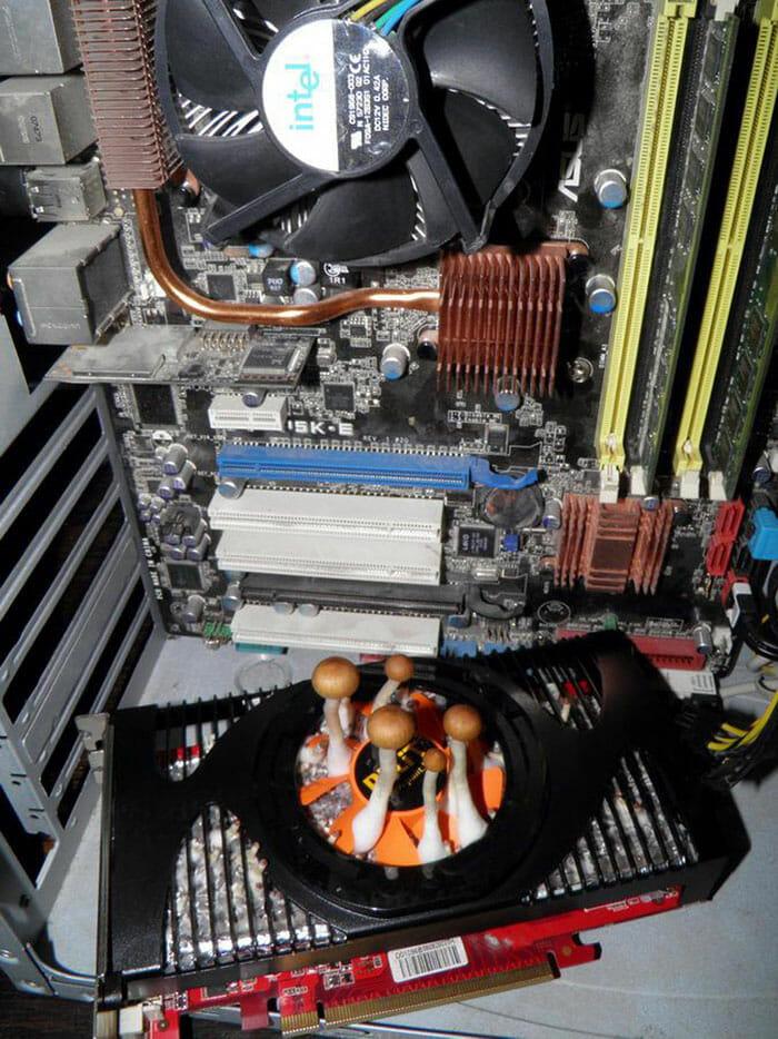 15 Imagens Que Farão Os PC Gamers Morrerem Por Dentro