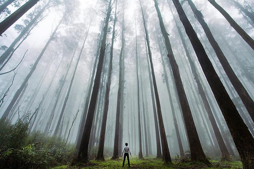 28 Fotos De Lugares Incríveis Fazem Humanos Parecerem Miniaturas