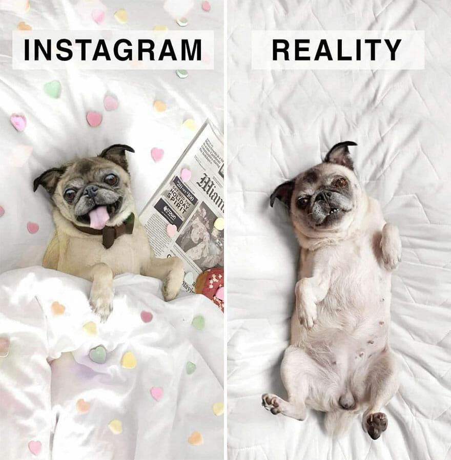 Instagram da Vida Real: Artista Cria Versões Realistas e Engraçadas Satirizando Fotos do Instagram