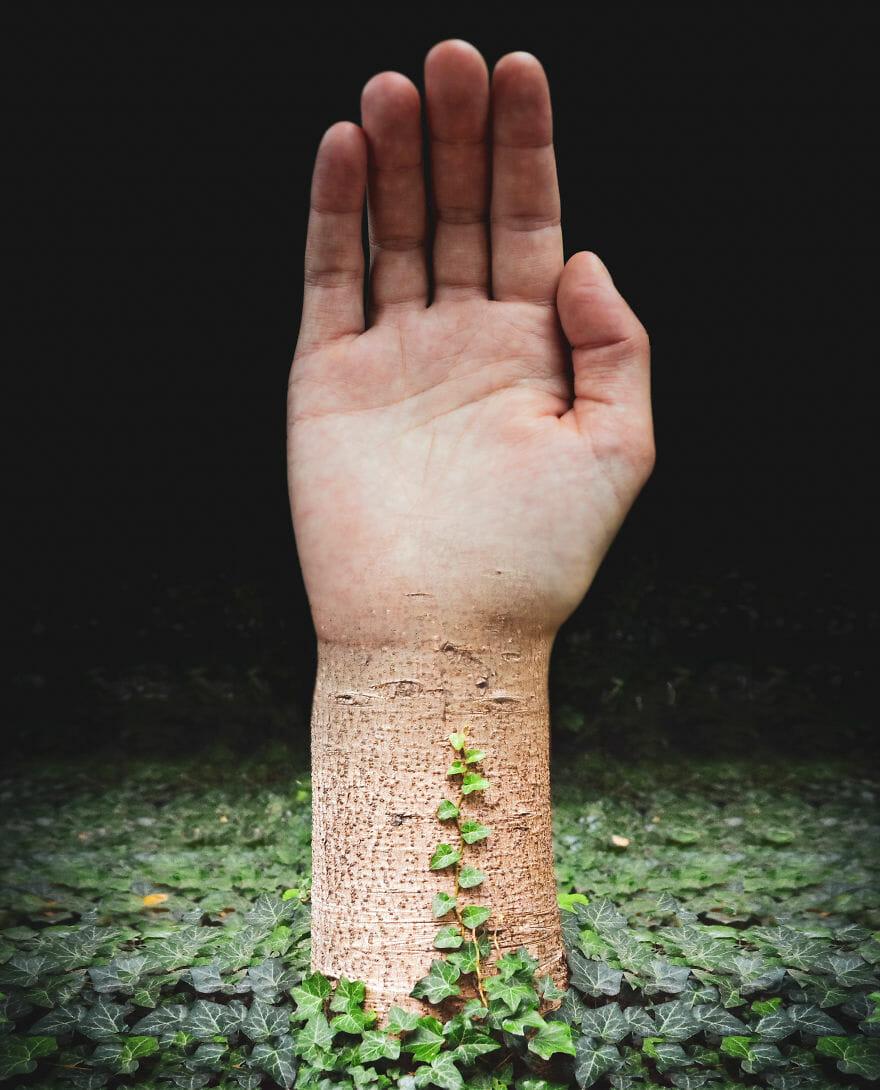 O Que Acontece Quando Se Mistura Partes Do Corpo Com Natureza