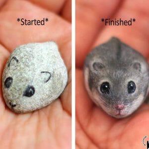 25 Pequenos Animais Fofos Que Na Verdade São Pedras Pintadas