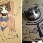 21 Fotos Engraçadas de Gatos Com Papelão