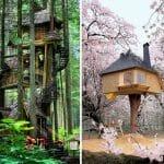 17 Casas Na Árvore Fantásticas Que Existem Pelo Mundo Afora