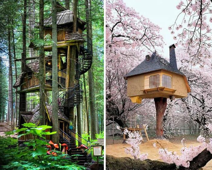 Casas na Árvore Fantásticas